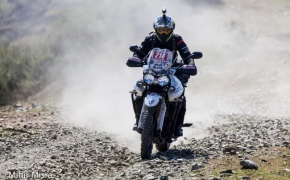 Triumph Organizes Tiger Training Academy In Delhi