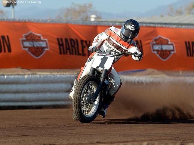 Harley Davidson Flat Track Riders